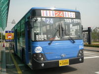 P1010466