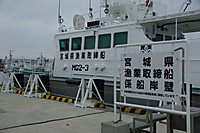 Imgp2614