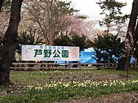 P5050859