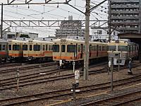 P8151590
